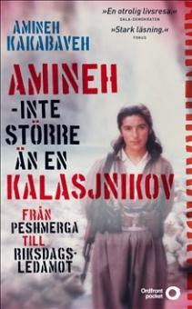 Amineh - inte större än en kalasjnikov: från peshmerga till riksdagsledamot