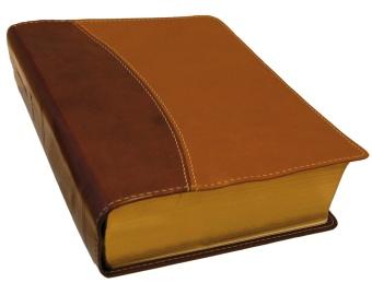 Bibel, duo soft, brun/beige, liten
