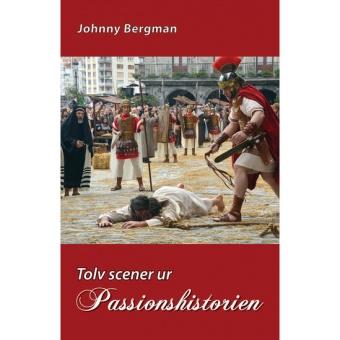 Tolv scener ur Passionhistorien