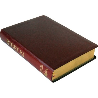 Folkbibeln 2015, konstskinn, röd, 155x232 mm