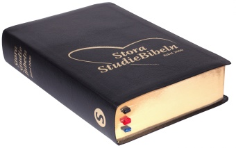 Stora Studiebibeln
