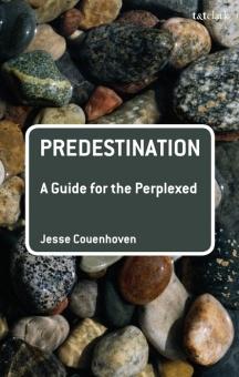 Predestination: A Guide for the Perplexed