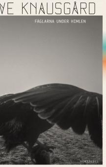 Fåglarna under himlen