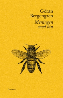 Meningen med bin