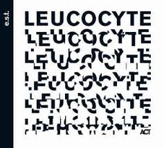 Leucocyte