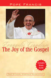 Joy of the Gospel - Pope Francis