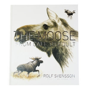 The Moose: From calf to adult