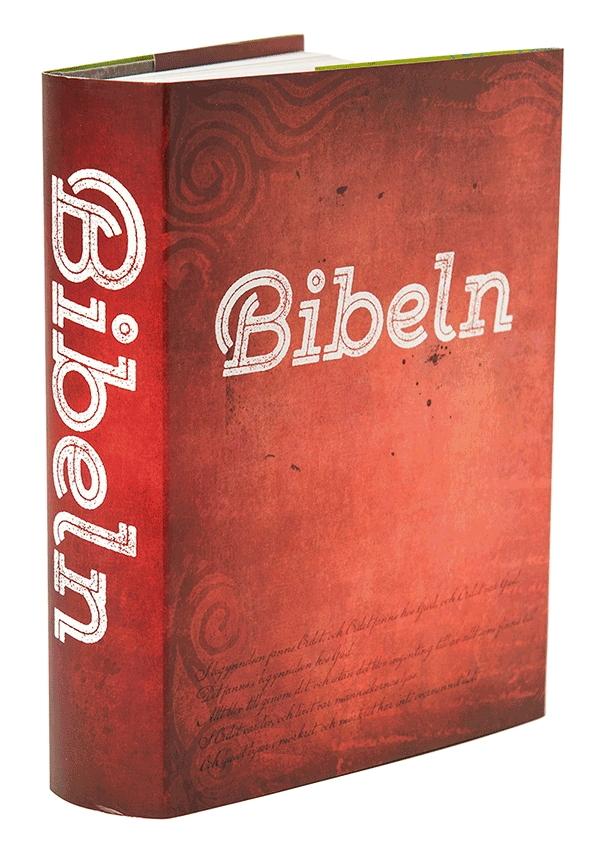 Bibel, med Arguments 160 sidor inlaga