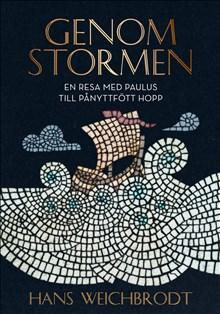 Genom stormen: En resa med Paulus till pånyttfött hopp
