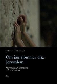 Om jag glömmer dig, Jerusalem: Möten mellan judendom och kristendom