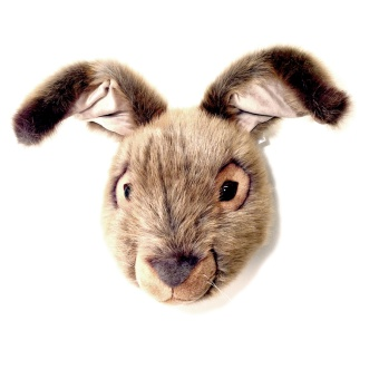 Djurhuvud Hare