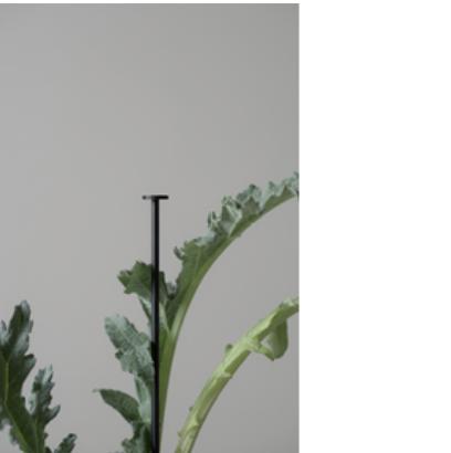 Dbkd Flower Stick