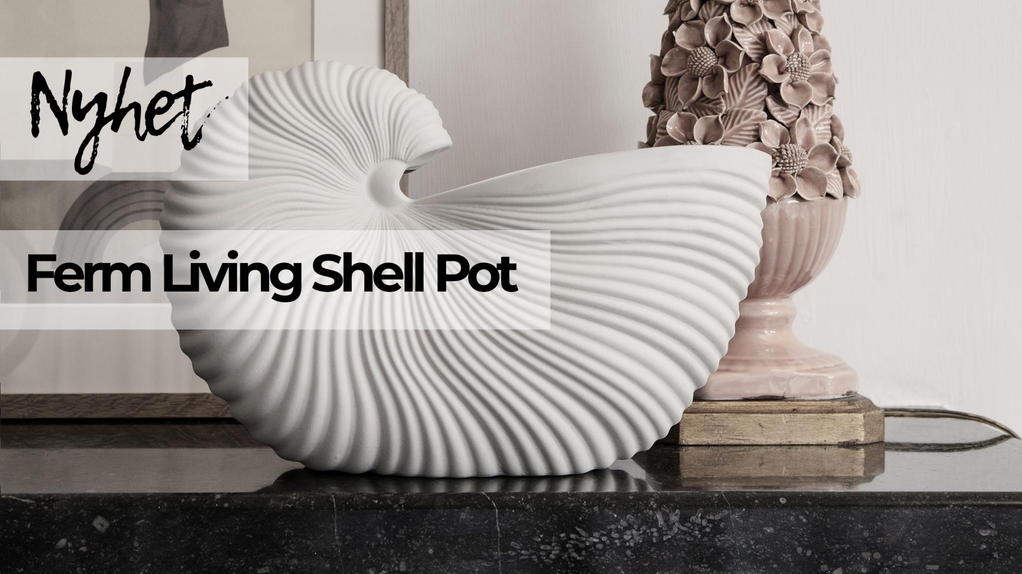 shell.webb.jpg