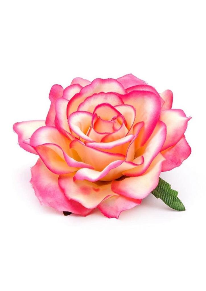 Just d'lux Ros Rosa Peach