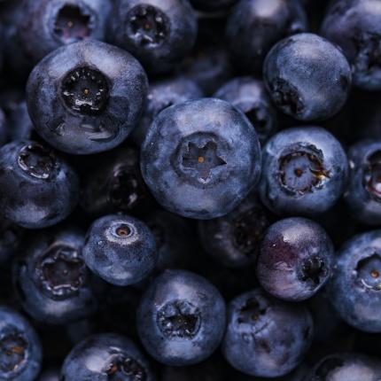 fläckar av blåbär