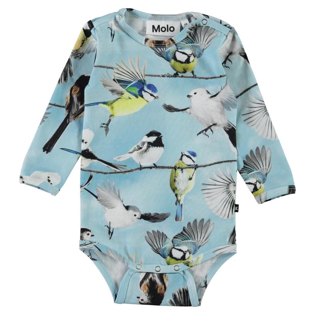 Body Foss småfåglar
