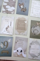 Baby's first year cards (24 motiv storlek 11x16)