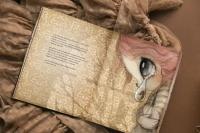 Bok - Det bortglömda Tivolit