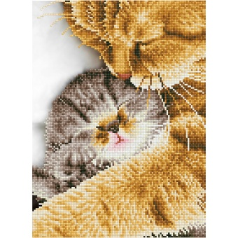 Diamond Dotz - Katt och kattunge (30x40)