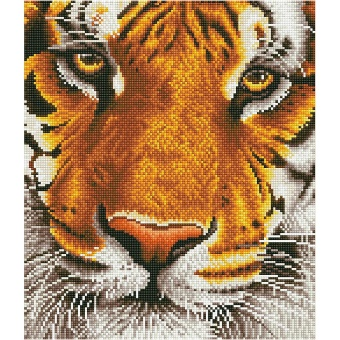 Diamond Dotz - Tiger (36x42)