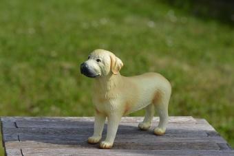 Hund Labrador i naturgummi
