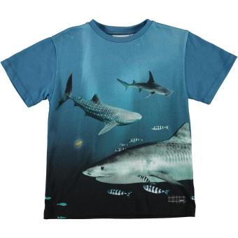 T-shirt Raveno Big Fish