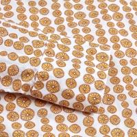STENSTRÖMS Skjorta, Feminine shirt, long sleeve