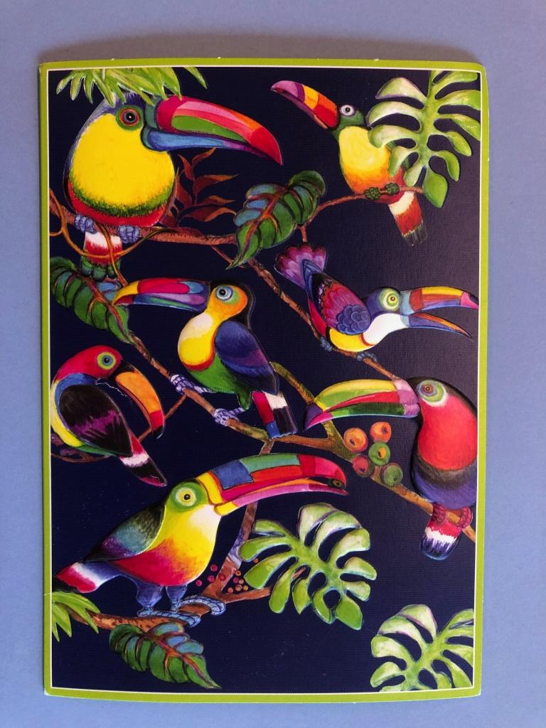 Färgglada Tucan-fåglar i ett träd