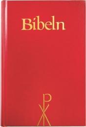 Bibel 2000, storstil