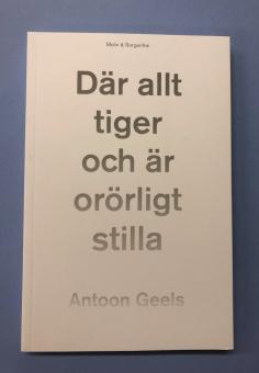 Där allt tiger och är orörligt stilla - Skomakaren Hjalmar Ekström och mystiken