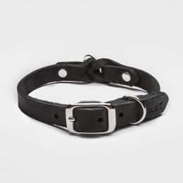 Cloud7 Riverside Park Collar Black