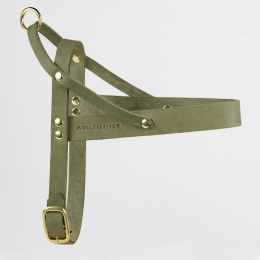 M&S Butter Leather Dog Harness