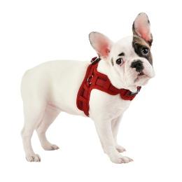 Puppia Puppytooth X sele