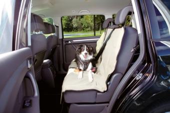 Bilskydd baksäte