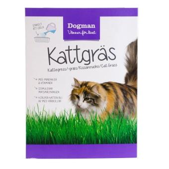Dogman Kattgräs