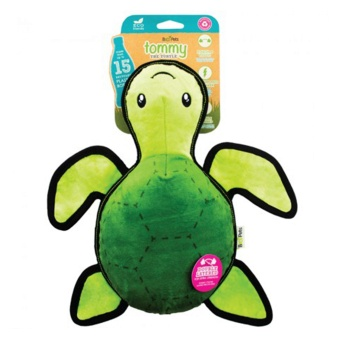 Beco Tommy the turtle