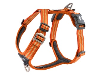 Dog Copenhagen Comfort Walk Air™ Harness Orange Sun