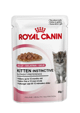 Royal Canin FHN Kitten Jelly