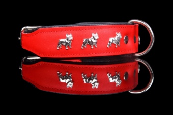 Collar French Bulldog