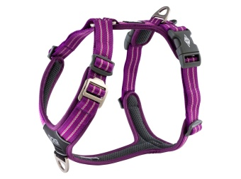 Dog Copenhagen Comfort Walk Air™ Harness Purple Passion