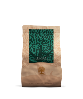 Essential Stamina Small Size 3kg